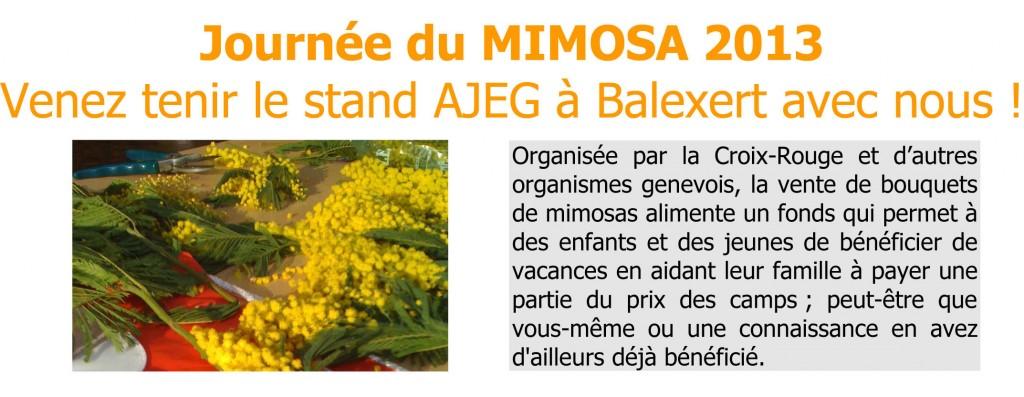 Vente de mimosas organisée par l'AJEG